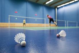 image of game-cock  - badminton  - JPG