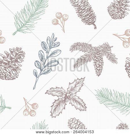 Christmas Branch Vector.Hand Drawn Christmas Vector Seamless Background Pattern Fir Needle Branch Strobile Holly And Mist Poster