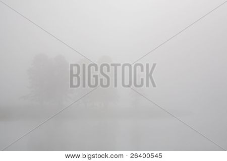 trees in the fog on the bank of the yellowstone river, yellowstone national park, wyoming. subtle reflections on water, ample copyspace.
