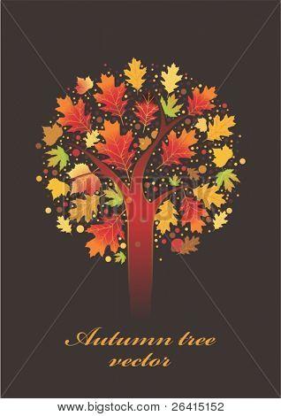 Autumn tree,vector