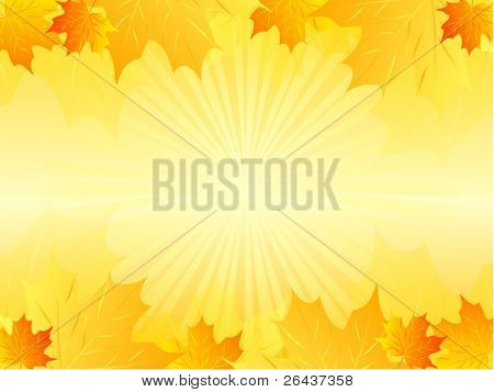 Beautiful autumn background with sunny rays