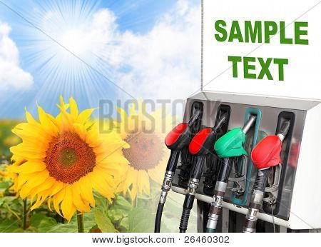Gas station and sunflowers field. Ecology concept. Space for your text.