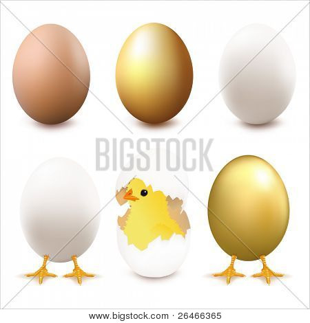 Collection Of Eggs, Isolated On White Background, Vector Illustration