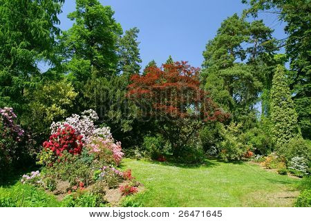 The Botanic Gardens - beauty colored garden on  spring