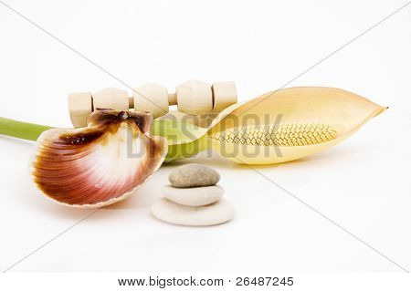 Natural spa elements - Composition of bath supplies isolated over white