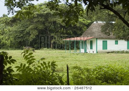 "Detail of typical farm house ""bohio"" on cuban countryside"