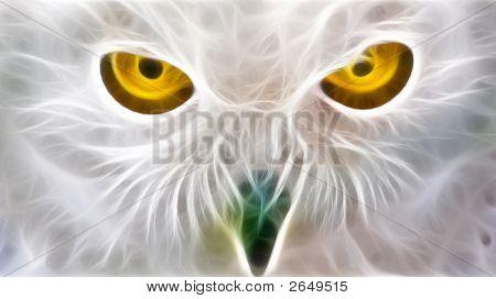 Owl Eyes Fractal