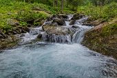 Wild River With Turquoise Water In Carpathian Mountains. Mountain Stream Flowing Into A Mountain Riv poster