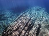 Sea Life Underwater Rocks Sunlight, Underwater Life. poster