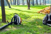 Heavy Duty Foliage Blower Lying On Clean Grass In City Park In Autumn. Seasonal Leaves Cleaning And  poster