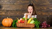 Harvest Festival Concept. Girl Kid Rustic Style Farmers Market With Fall Harvest. Child Cheerful Cel poster