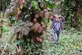 Lets Just Go Walking. Little Boy Walking Around In Woods. Little Boy Walking Into The Wild. Enjoying poster