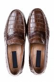 Brown Reptile Leather Mens Shoes, Top View, On A White Background, A Pair Of Shoes, Isolate poster