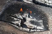 Gray, Red, Orange And Black - Texture Of Burnt Wood, Shallow Depth Of Field. Closeup Of Burning Fire poster