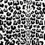 Leopard Seamless Pattern. Animal Print. Pattern With Leopard Fur Texture. Repeating Leopard Fur Back poster