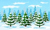 Winter Landscape With White Pine Trees On Snow Hill. Christmas Landscape With Fir Trees Forest And S poster