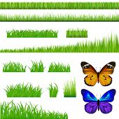 3 Backgrounds Of Green Grass And 9 Bunches Of Grass And 2 Butterflies, Isolated On White