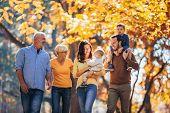 Multl Generation Family In Autumn Park Having Fun poster