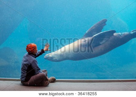 girl playing with sealion