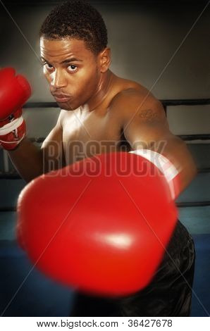 Portrait of a young aggressive African American male boxer punching