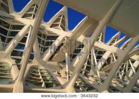 Science Museum In Valencia