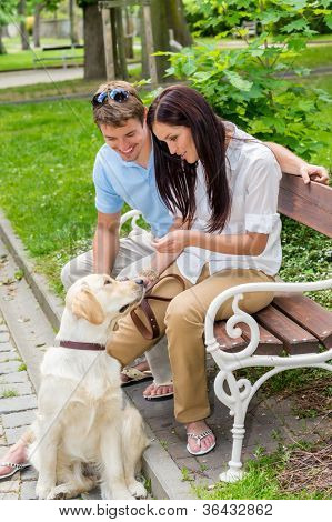Young couple training dog in the park happy teaching pet