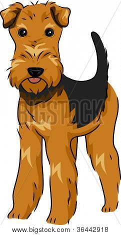Illustration Featuring a Cute and Playful Airedale Terrier