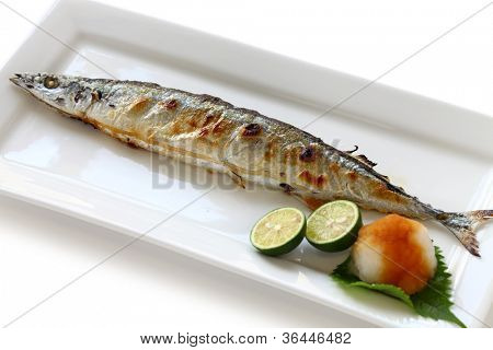 broiled pacific saury with salt, japanese cuisine