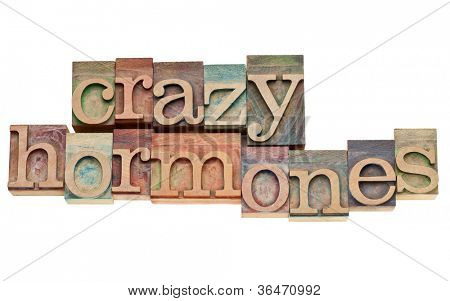 crazy hormones - isolated words in vintage letterpress wood type stained by color inks