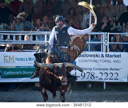 SAN JUAN CAPISTRANO, CA - AUGUST 25: unidentified cowboy competes in the bull riding event at the PRCA Rancho Mission Viejo rodeo in San Juan Capistrano, CA on August 25, 2012.