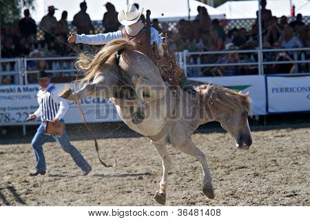 SAN JUAN CAPISTRANO, CA - AUGUST 25: unidentifiedcowboy competes in the bareback riding event at the PRCA Rancho Mission Viejo rodeo in San Juan Capistrano, CA on August 25, 2012.