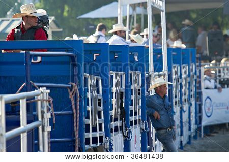SAN JUAN CAPISTRANO, CA - AUGUST 25: unidentified Cowboys wait to compete in the PRCA Rancho Mission Viejo rodeo in San Juan Capistrano, CA on August 25, 2012.