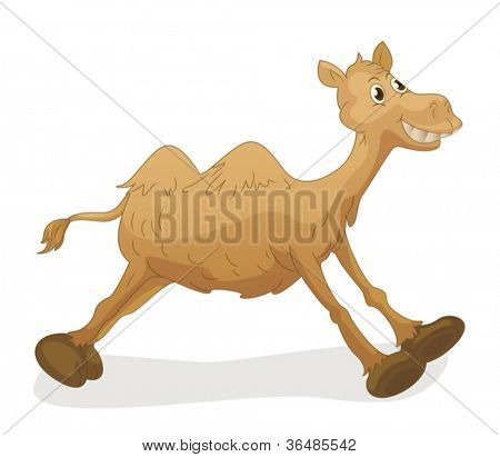 Illustration of a cute camel