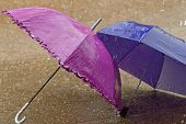 Umbrella At Intense Rainy Weather poster