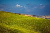 Tuscany landscape with typical farm house on a hill in Val d'Orcia, Italy