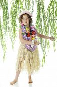 picture of hula dancer  - An elementary aged hula girl dancing among leafy branches - JPG
