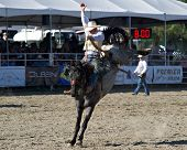 SAN JUAN CAPISTRANO, CA - AUGUST 25: unidentified cowboy competes in the saddle bronc riding event a