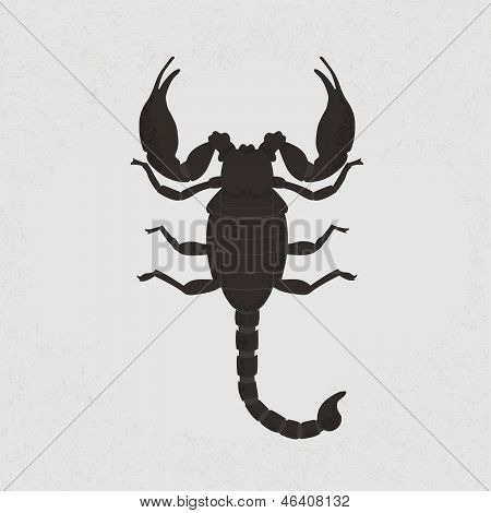 scorpion , eps10 vector format
