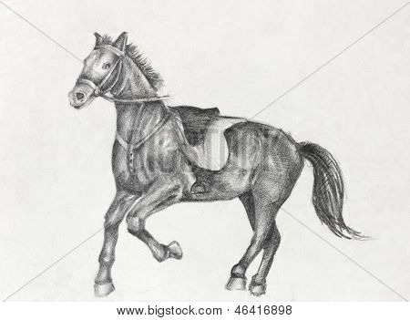 Drawing of a Running Horse