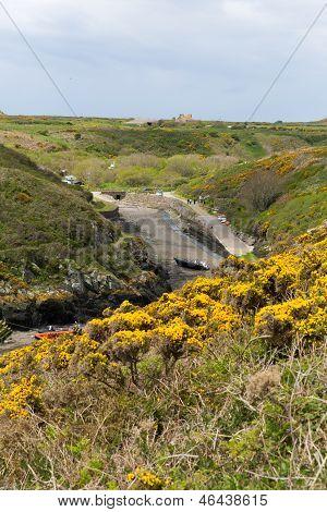 Porthclais Pembrokeshire Wales