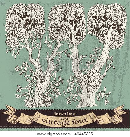 Magic Grunge Forest Hand Drawn By A Vintage Font - W