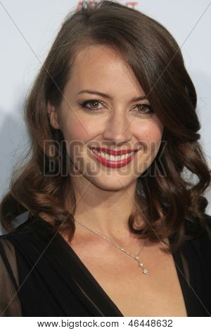 LOS ANGELES - JUN 5: Amy Acker at the screening of Lionsgate and Roadside Attractions' 'Much Ado About Nothing' on June 5, 2013 in Los Angeles, California
