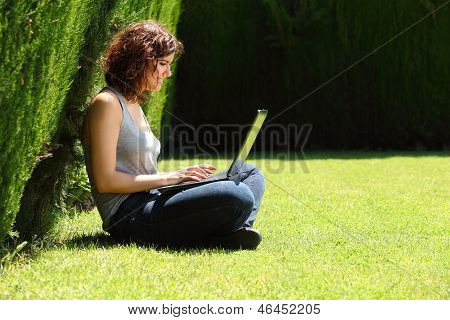 Pretty Woman Sitting On The Grass In A Park With A Laptop