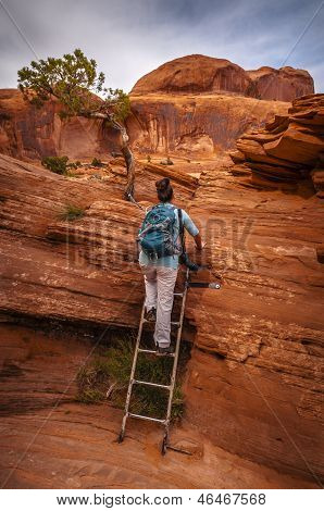 Hiker on a Ladder