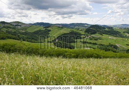 Meadows, green hills and clouds