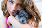 picture of hairy  - girl hug a little puppy dog gray hairy chihuahua doggy - JPG
