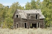 foto of sagebrush  - An old cabin decays on the sagebrush steppe of the North American High Country - JPG
