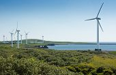 stock photo of sustainable development  - Coastal wind farm used to harness renewable wind power into mechanical energy to generate electricity.