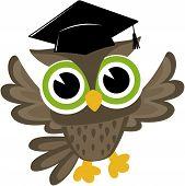 happy wise owl