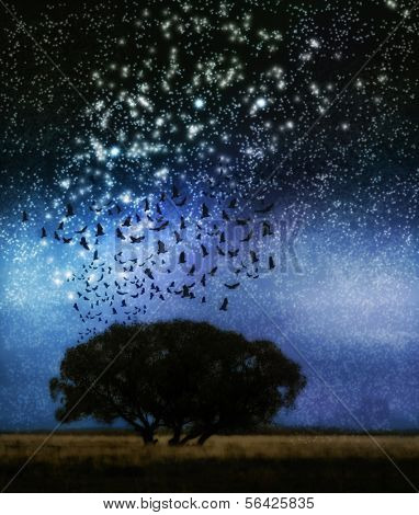 a tree at night with birds and stars